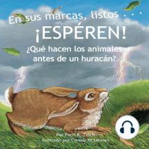 En sus marcas, listos… ¡ESPÉREN!: ¿Qué hacen los animales antes de un huracán?