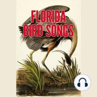 Florida Bird Songs