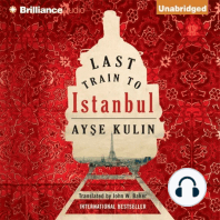 Last Train to Istanbul