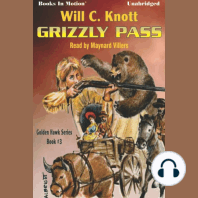Grizzly Pass