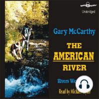 The American River