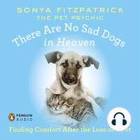 There Are No Sad Dogs in Heaven