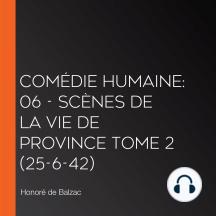 Comédie Humaine: 06 - Scènes de la vie de province tome 2 (25-6-42)