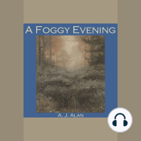 A Foggy Evening