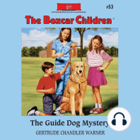 The Guide Dog Mystery