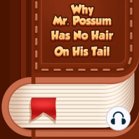 Why Mr. Possum Has No Hair on His Tail