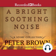 A Bright Soothing Noise