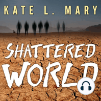 Shattered World