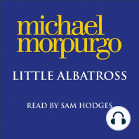 Little Albatross