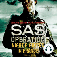 Night Fighters in France