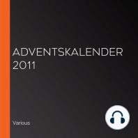 Adventskalender 2011