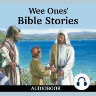 Wee Ones' Bible Stories