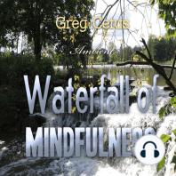 Waterfall of Mindfulness