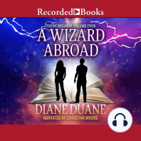 A Wizard Abroad