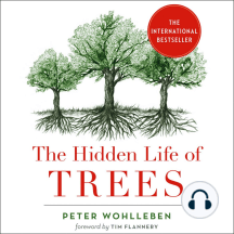 The Hidden Life of Trees: Discoveries from a Secret World