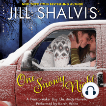 One Snowy Night: A Heartbreaker Bay Christmas Novella