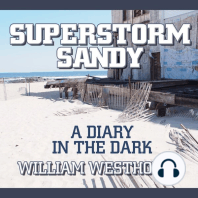 Superstorm Sandy: A Diary in the Dark
