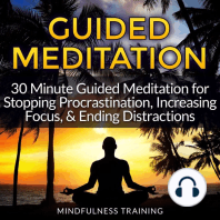 Guided Meditation - Stopping Procrastination