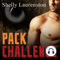 Pack Challenge