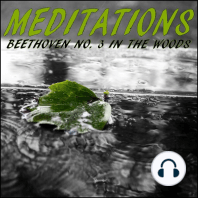 Meditations – Beethoven No. 3 in the Woods