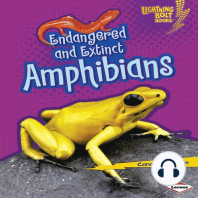 Endangered and Extinct Amphibians