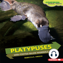 Platypuses: Web-footed Billed Mammals