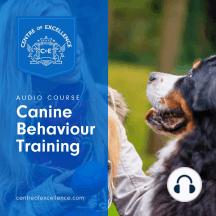Canine Behaviour Training