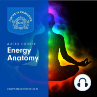 Energy Anatomy