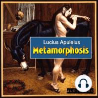 Metamorphosis (The Golden Ass)