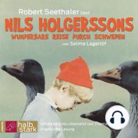 Nils Holgerssons wunderbare Reise durch Schweden (Ungekürzt)