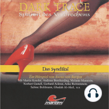 Dark Trace - Spuren des Verbrechens, Folge 6: Das Syndikat