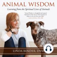 Animal Wisdom