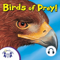 Know-It-Alls! Birds of Prey