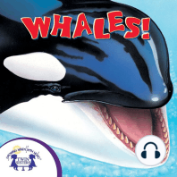 Know-It-Alls! Whales