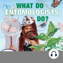 What Do Entomologists Do?