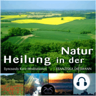 SyncSouls Kurz-Meditationen, Vol. 1 - Heilung in der Natur