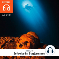 ARCHÄOLOGIE - Zeitreise im Burgbrunnen: Der Forschungstaucher Florian Huber berichtet über seine abenteuerlichsten Expeditionen.