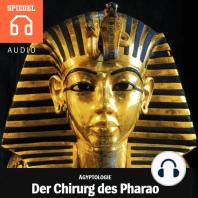 Der Chirurg des Pharaos