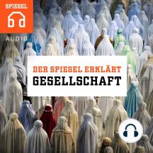 DER SPIEGEL ERKLÄRT: Gesellschaft: Zwölf Einblicke in unsere Gesellschaft.
