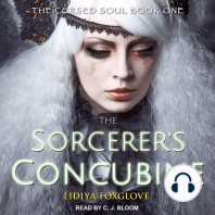 The Sorcerer's Concubine