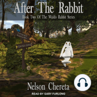 After The Rabbit