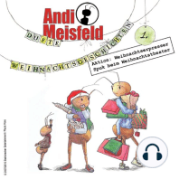 Andi Meisfeld, Dufte Weihnachtsabenteuer, Folge 01