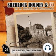 Sherlock Holmes & Co, Folge 29