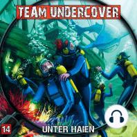 Team Undercover, Folge 14