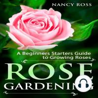 Rose Gardening