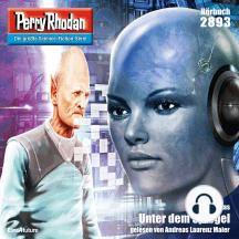 """Perry Rhodan 2893: Unter dem Spiegel: Perry Rhodan-Zyklus """"Sternengruft"""""""
