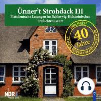 Ünner't Strohdack III