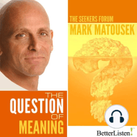 The Question of Meaning