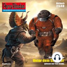 """Perry Rhodan 2540: Unter dem Schleier: Perry Rhodan-Zyklus """"Stardust"""""""