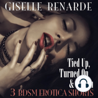 Tied Up, Turned On and Taken: 3 BDSM Erotica Shorts